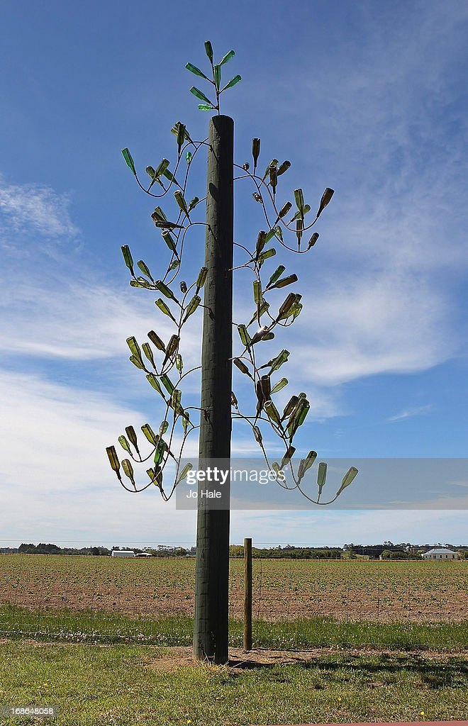 Bottle Tree and animal skeleton skull in background at the NZ Kumara Capital Farm on January 8, 2013 in Aratapu in the Kaipara District in the Northlands of the North Island in New Zealand.