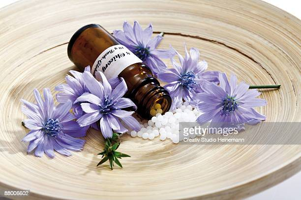 Bottle with Bach flower stock remedy, chicory (Cichorium intybus) on wooden plate