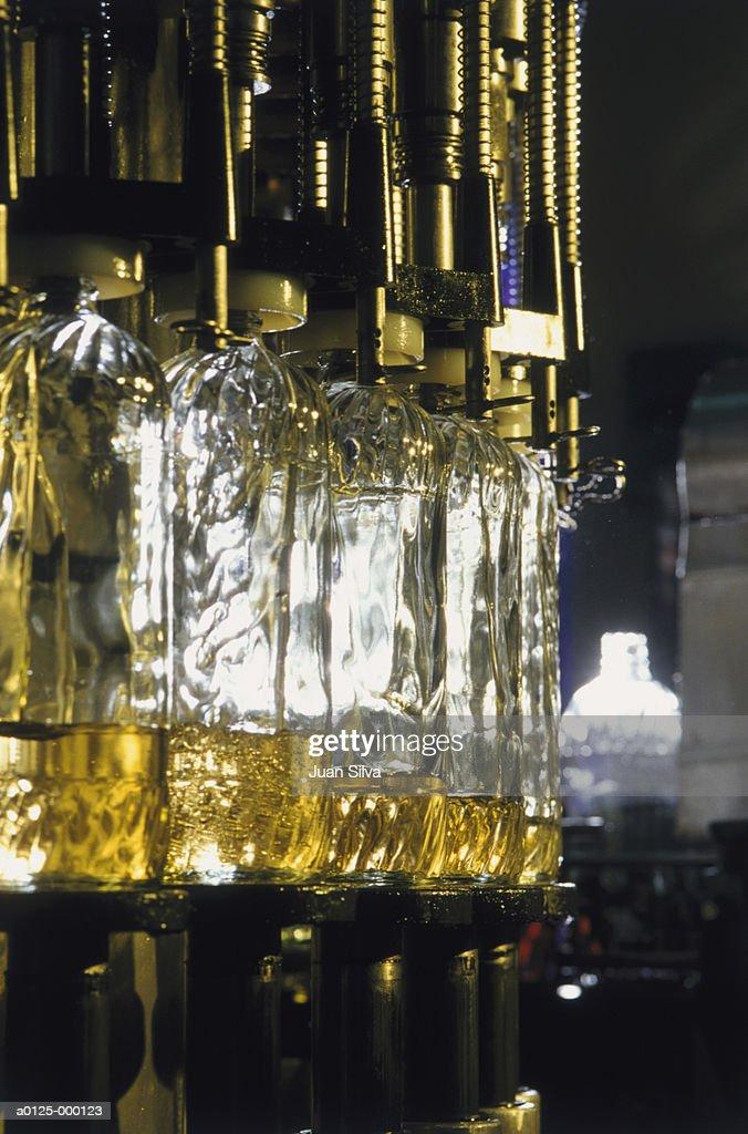 Bottles in Corn Oil Factory : Stock Photo