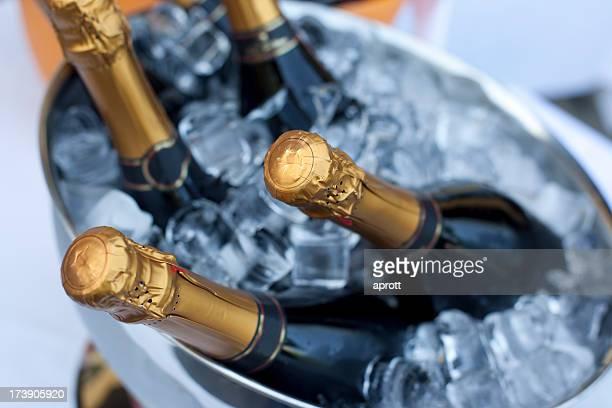 Flaschen Champagner im Kühler