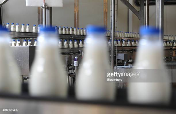 Bottles of fresh milk move along a conveyor belt before labelling at the Subotica Mlekara AD dairy production plant in Subotica Serbia on Wednesday...