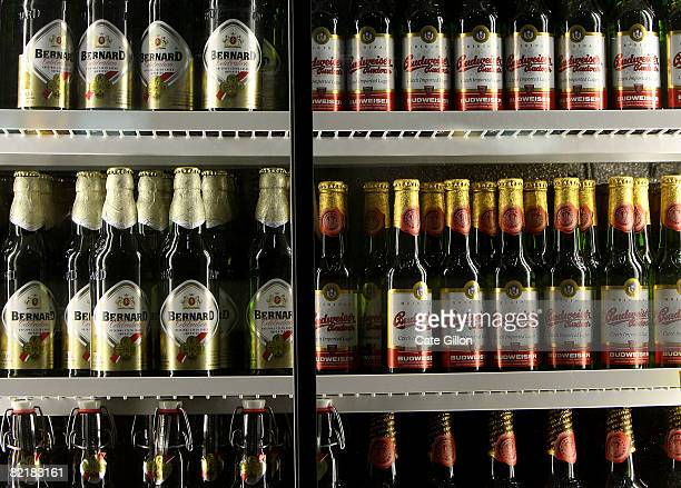 Bottles of lager in the fridge at the Great British Beer Festival on August 5 2008 in London England The annual Great British Beer Festival runs from...
