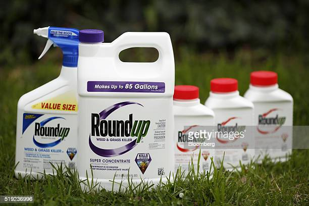 Bottles of Monsanto Co Roundup brand herbicide products are arranged for a photograph in Shelbyville Kentucky US on Monday April 4 2016 Monsanto is...