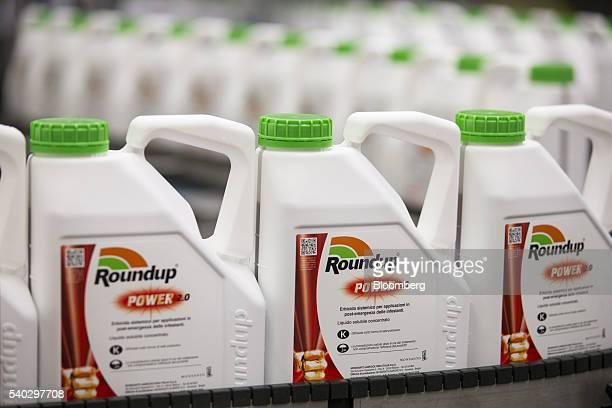 Bottles of Roundup weed killer move along the production line at the herbicide manufacturing facility operated by Monsanto Co in Antwerp Belgium on...