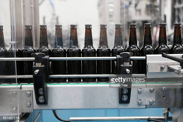 bottling machine in a micro brewery