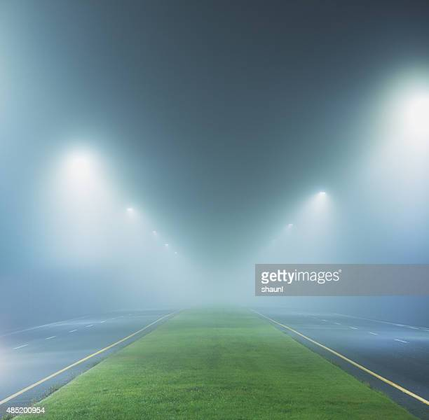Boulevard in the Fog