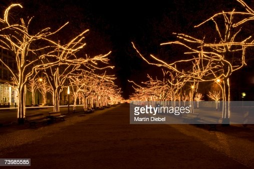 Boulevard with illuminated trees, Berlin, Germany