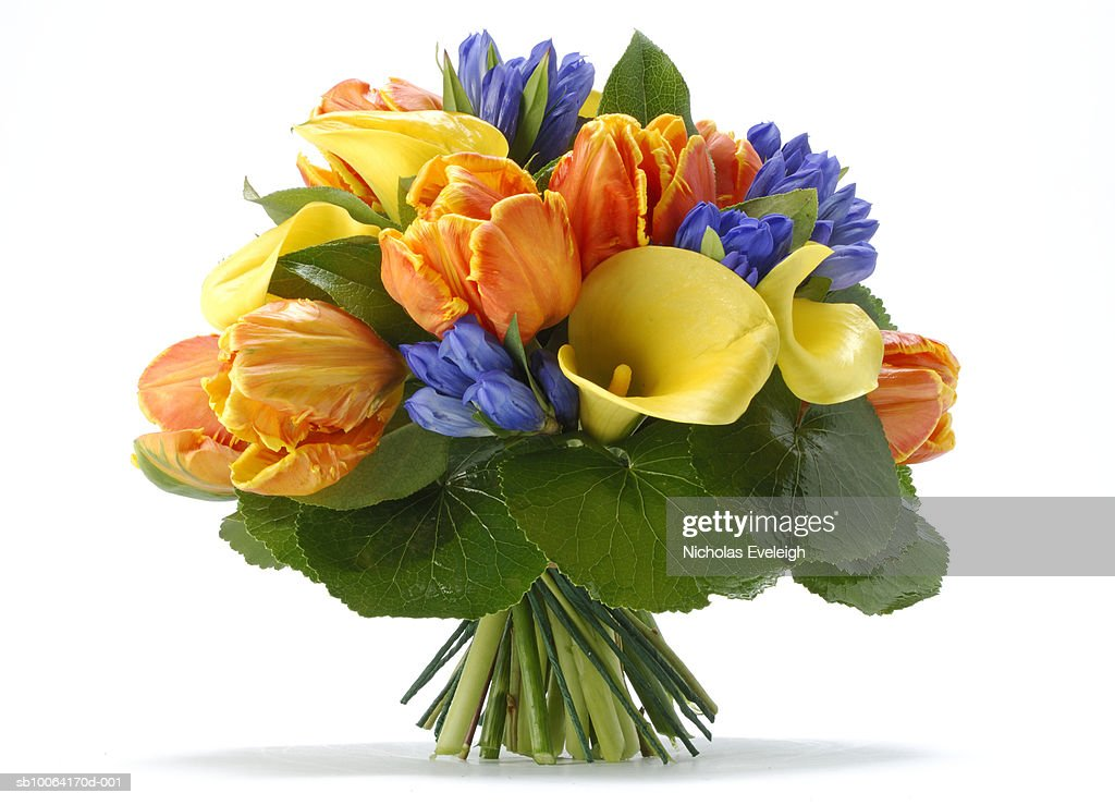 Bouquet of arranged flowers : Stock Photo