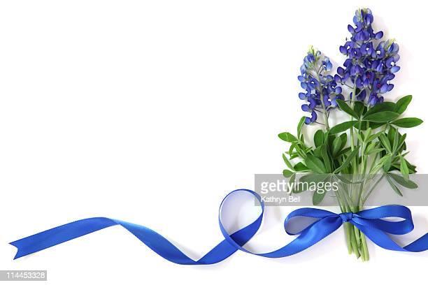 Bouquet of Bluebonnets