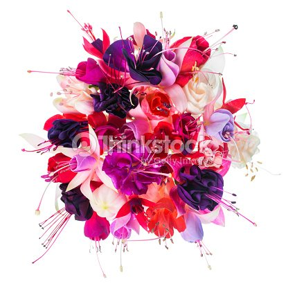 Bouquet of colorful fuchsia flowers is isolated on white
