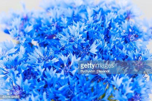 Azulejo flores con un ramo de flores, fondo bokeh abstracto : Foto de stock