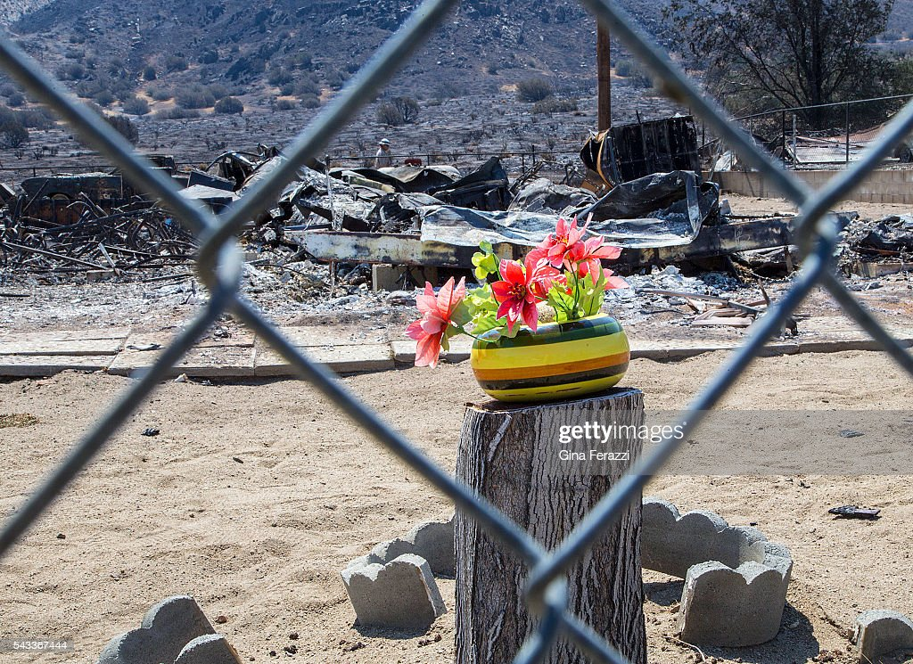 A bouquet of flowers has been placed on a tree stump in front of a home destroyed during the Erskine Fire June 27, 2016 in South Lake, California.