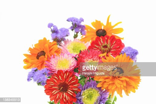Bouquet of flowers : Stock Photo
