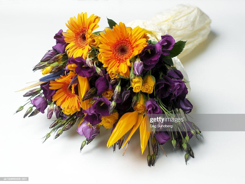 Bouquet of flowers, studio shot : Stock Photo