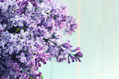 A bouquet of lilacs in front of light background, vintage colors.