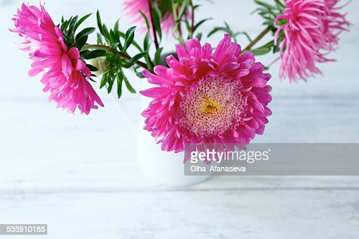 Bouquet of pink asters : Stock Photo