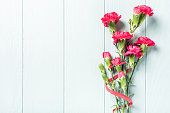 Spring holidays flat lay with bouquet of pink carnation on light turquoise wooden background. Top view with copy space.