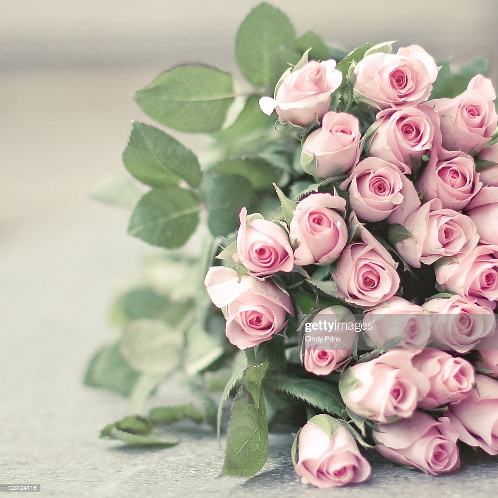 Bouquet of pink roses : Stock Photo