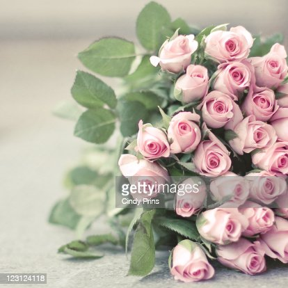 Bouquet of pink roses