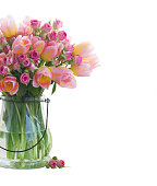 Bouquet of fresh pink and yellow tulips and roses in glass vase isolated on white background