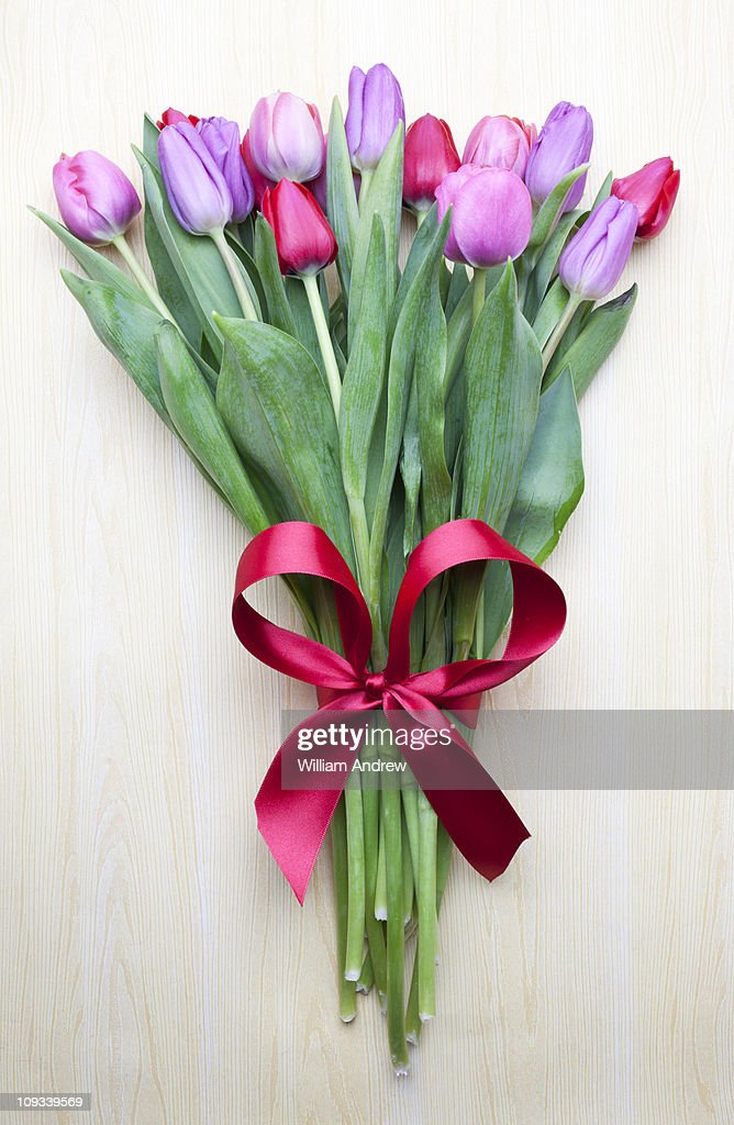 Bouquet of tulips with red ribbon : Stock Photo