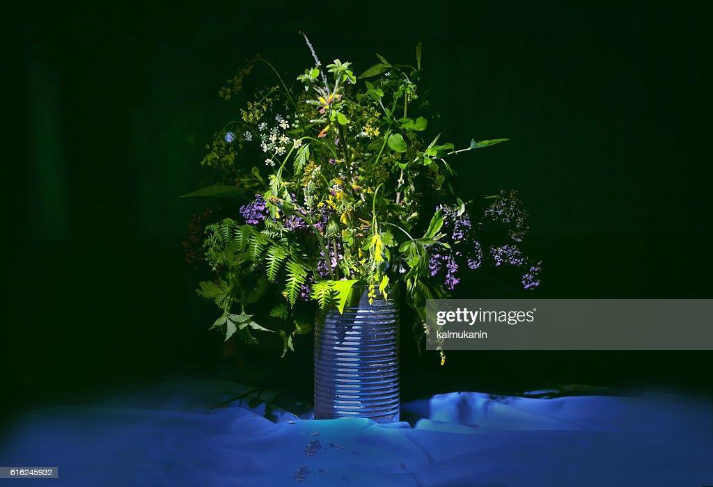 bouquet of wild flowers : Stock Photo