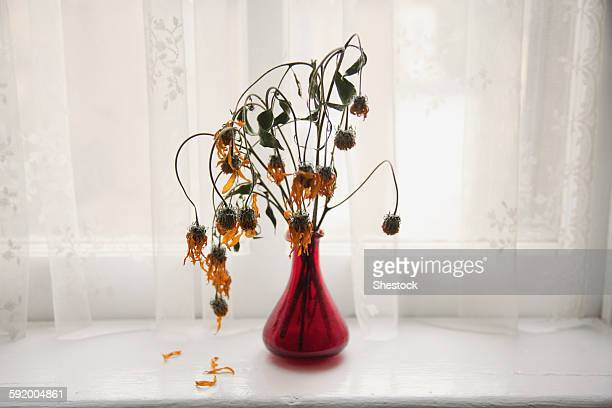 Bouquet of wilting flowers in windowsill