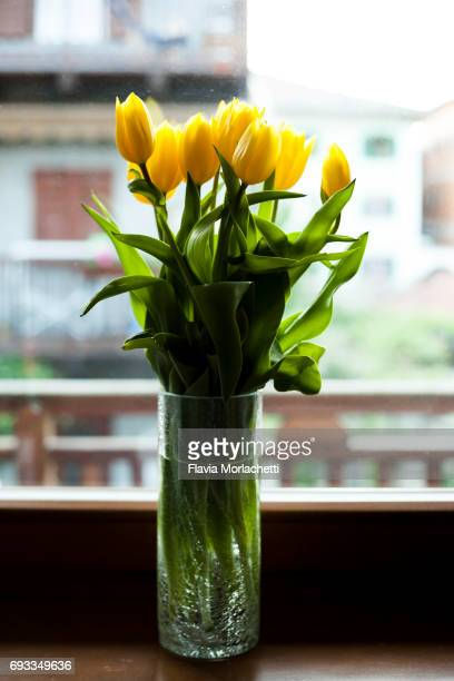 Bouquet of yellow tulips on window sill