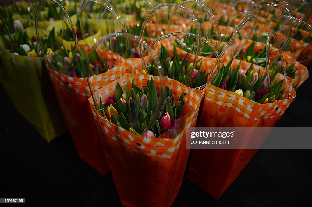 Bouquets of flowers are seen during the opening of the Gruene Woche Agricultural Fair in Berlin on January 18, 2013. This year the official partner country of the fair is The Netherlands.
