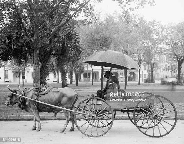 Bovinmobile Savannah Georgia USA circa 1910