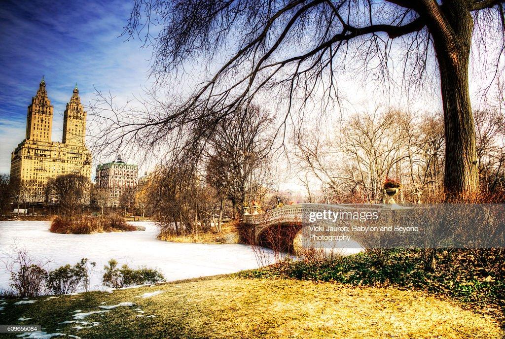 Bow Bridge in Central Park in Late Winter