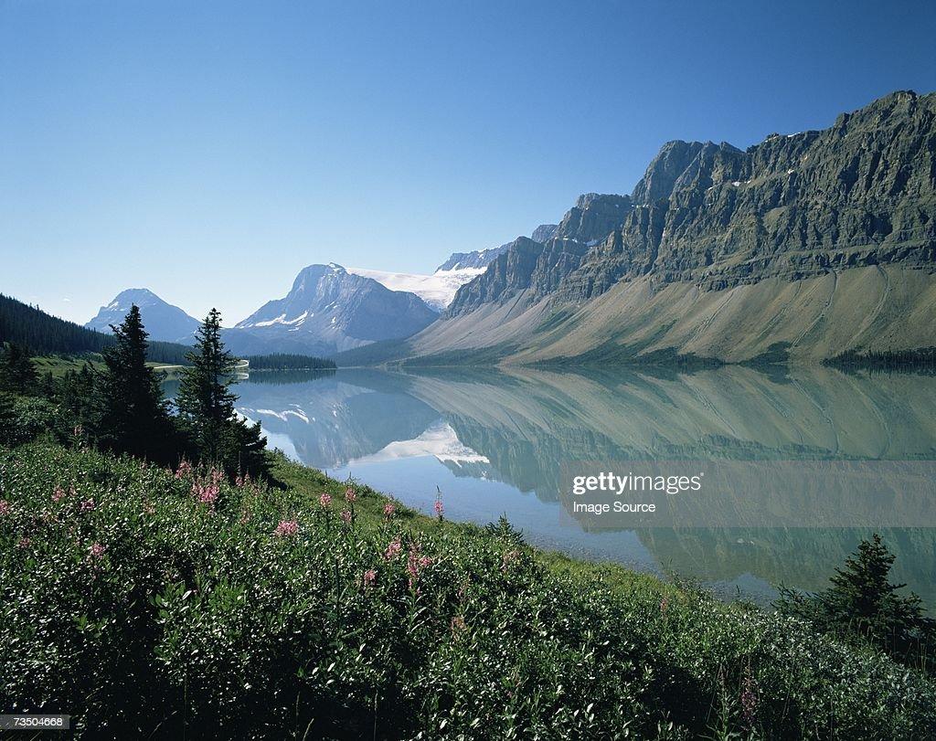 Bow lake at banff national park