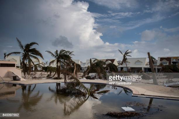 Bowed palm trees lean before a sandfilled swimming pool in the Baie Nettle area of Marigot on September 10 2017 on SaintMartin island devastated by...