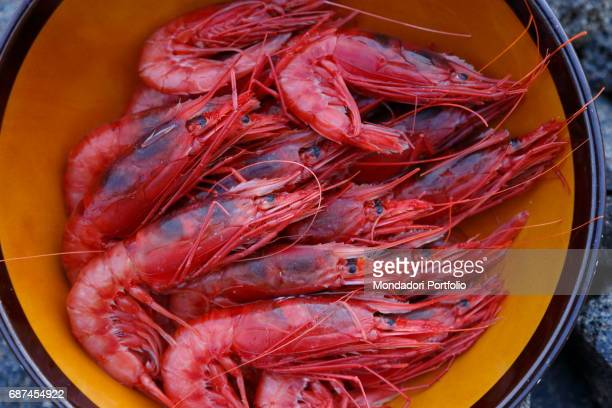 A bowl full of red shrimps Island of Pantelleria August 2015