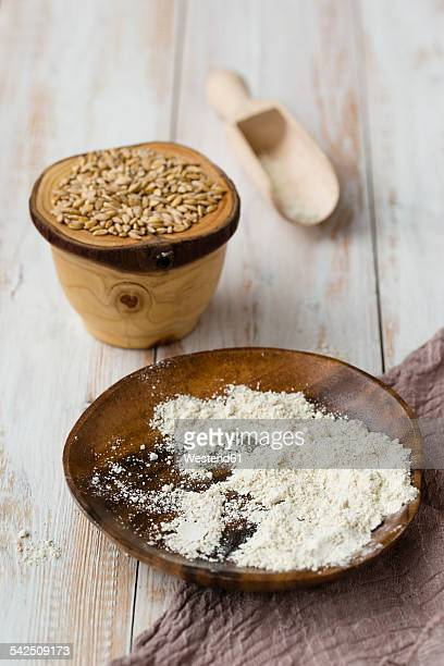 Bowl of Einkorn wheat, Triticum monococcum, shovel and bowl of whole meal