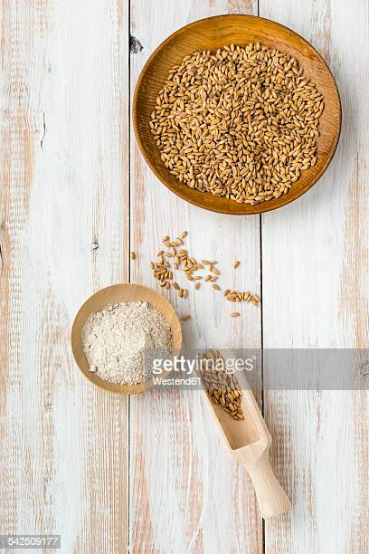 Bowl of emmer, Triticum dicoccum, and bowl of whole meal on light wood