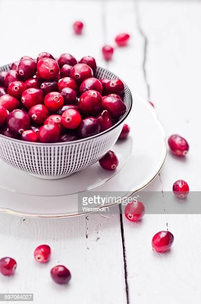Bowl of fresh cranberries
