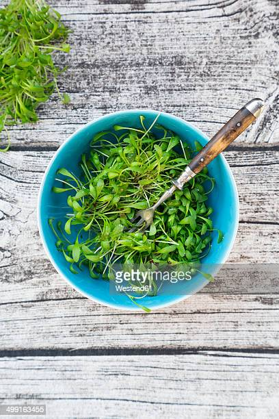 Bowl of garden cress salad on grey wooden table, view from above