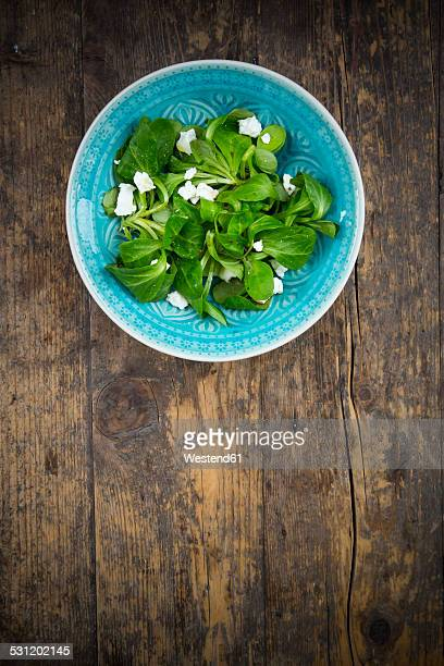Bowl of lambs lettuce, Valerianella locusta, with goat cream cheese on wood