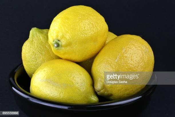 Bowl of Lemon fruits on a black background (Citrus × limon)