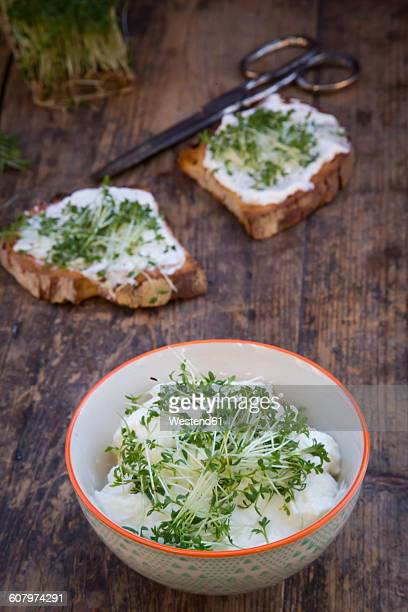 Bowl of organic curd and cress