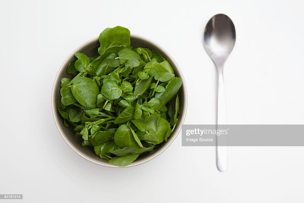 Bowl of spinach and watercress and a spoon : Stock Photo