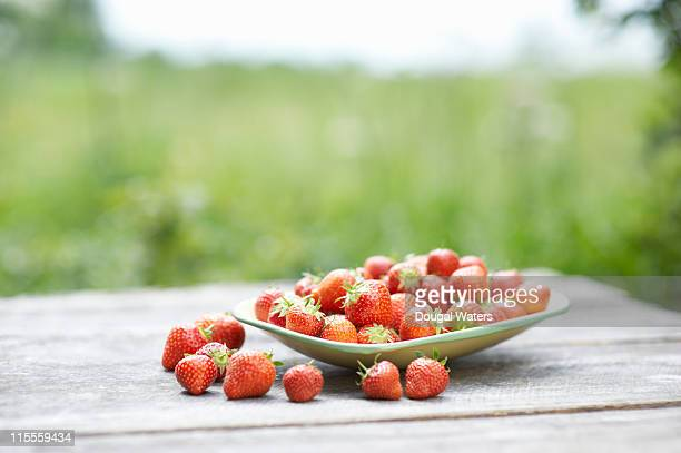 Bowl of strawberries on garden table.