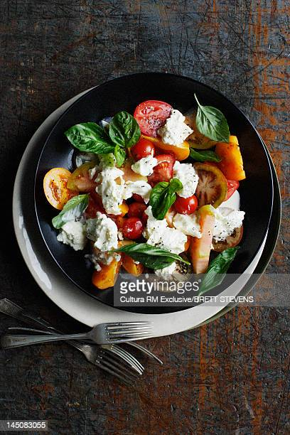 Bowl of tomato and cheese salad