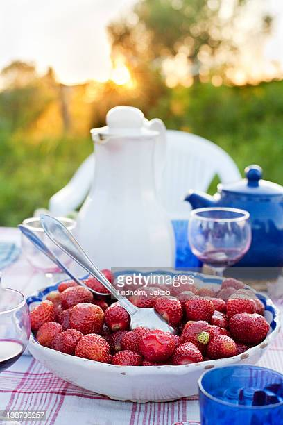 Bowl with strawberries on picnic table