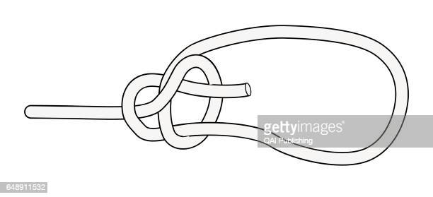 Bowline Knot used to create a loop at the end of a rope that cannot slip and in which a person can sit to be raised or lowered