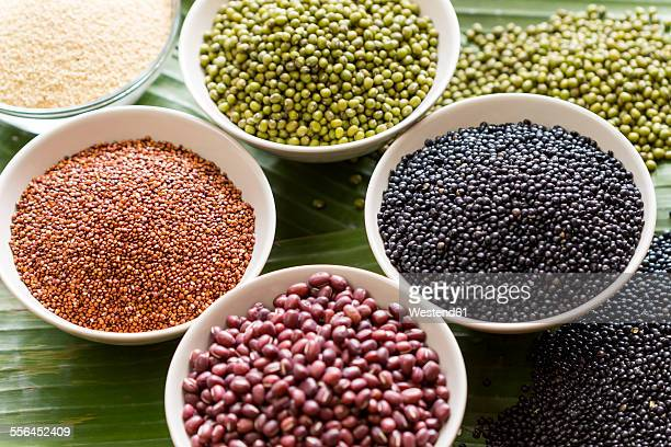 Bowls of different pulses