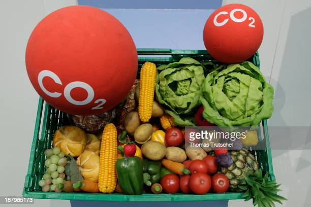 Box filled with vegetables and carbon dioxide CO2 symbolizing the carbon footprint