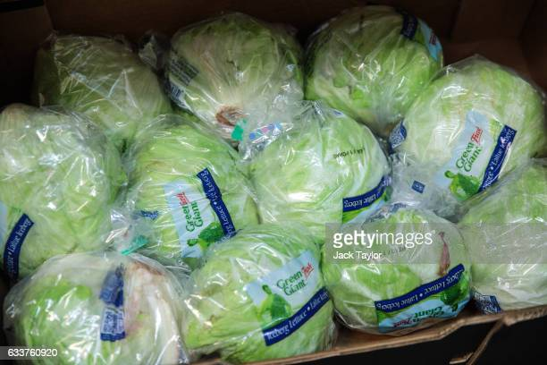 A box of iceberg lettuce is packaged for sale at the New Covent Garden fruit and vegetable wholesale market Nine Elms on February 4 2017 in London...