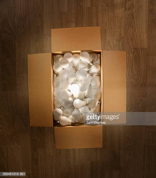 Box of lightbulbs, one illuminated, overhead view